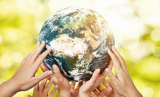 WINDTRE lancia il progetto Oasi per celebrare la riduzione di emissioni CO2 concordate con WWF